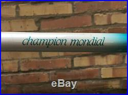Rare 1984 Gazelle Champion Mondial AA Super Monostay frameset, Campagnolo Record